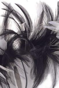 Bibi noir et blanc plume detail